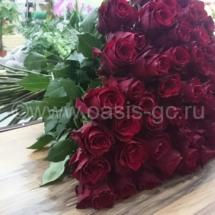 101 роза Эквадор 70 см
