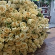 101 роза Кения Кустовая 50 см