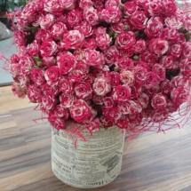 Кустовые розы Фаэфлэш