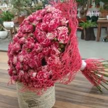 Fareflash roses
