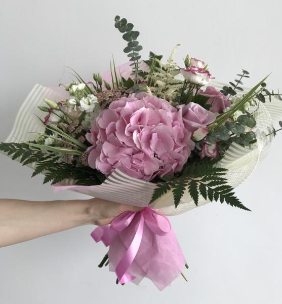 гортензия розовый